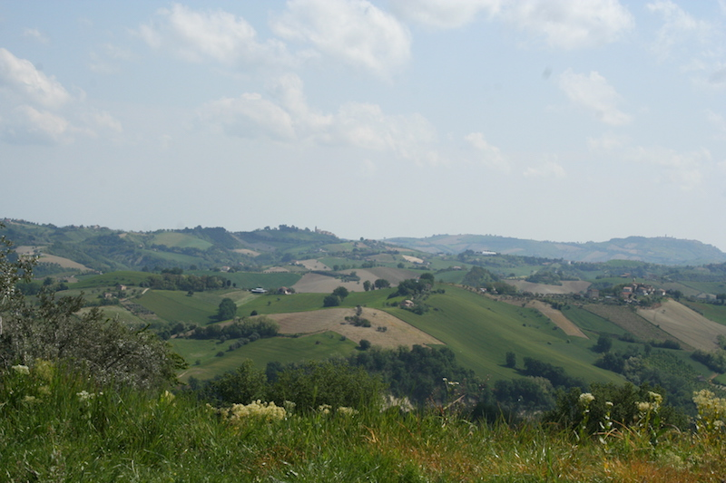 Italy tips Monterubbiano travel planning consultant